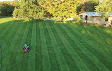 Lawn Striping 101 with Brian Latimer