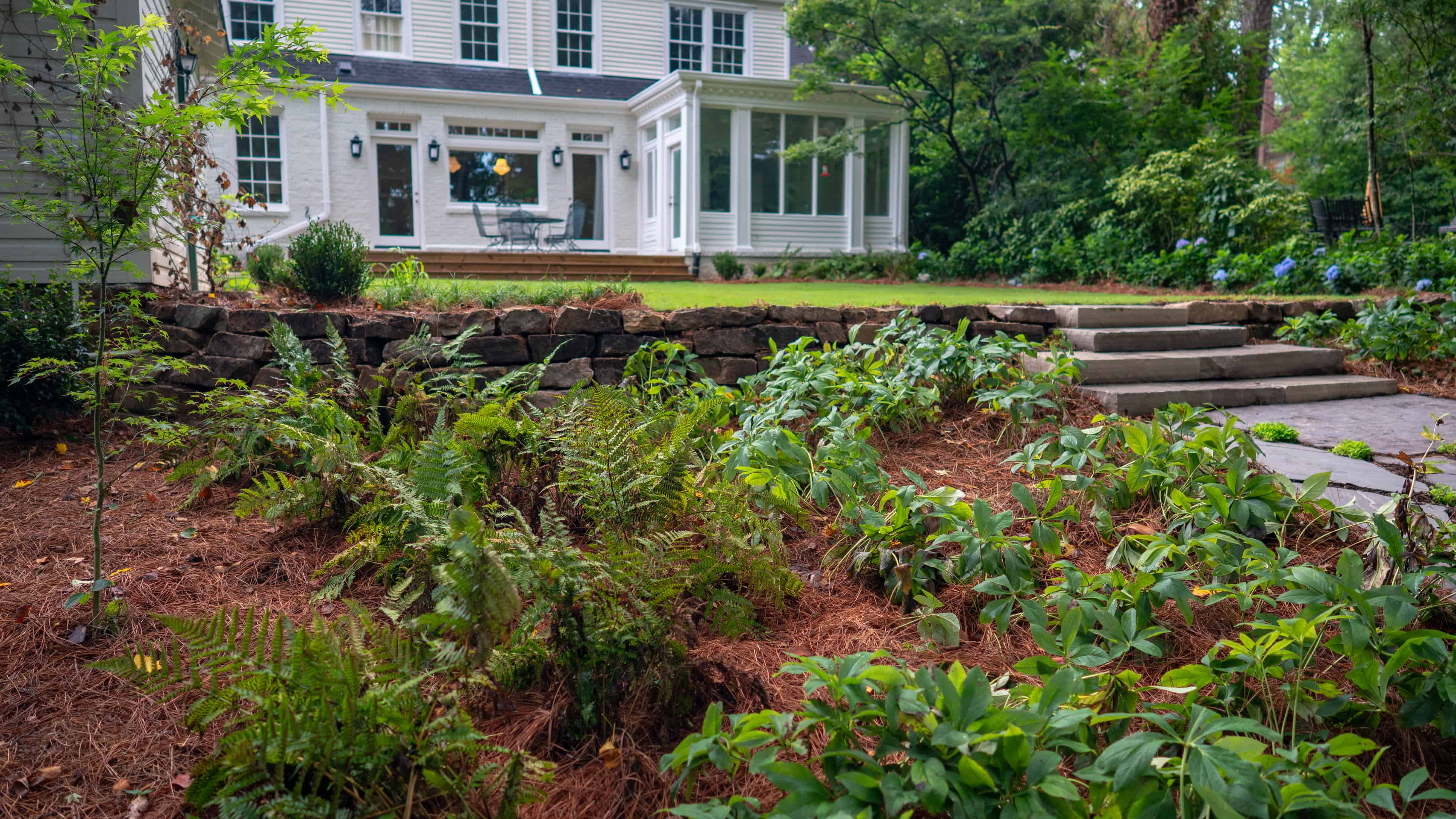 create a transitional landscape for more interest
