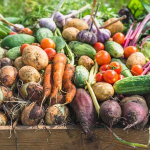 Fall Garden Harvest Recipes