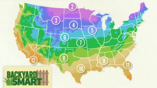 Know Your Plant Hardiness Zone