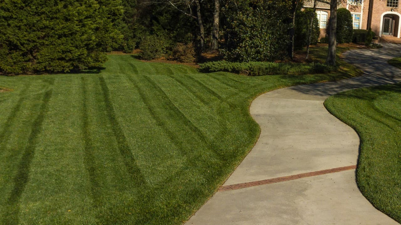 Lawn Striping with a zero turn mower